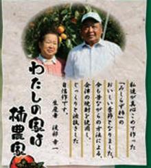 渡部柿園01